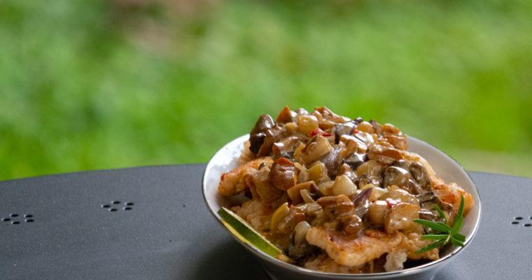 Szczupak z sosem grzybowym, z chilli i rozmarynem